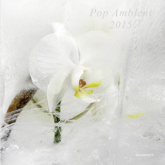 Various Artists - Pop Ambient 2015