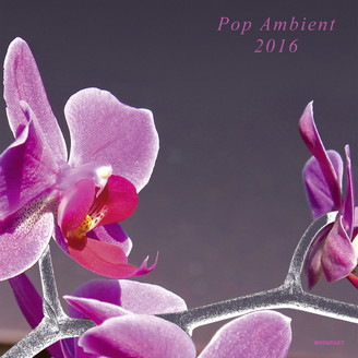 Various Artists - Pop Ambient 2016