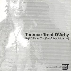 Terence Trent D'arby - Sayin'About You (Bini & Martini  Remix)