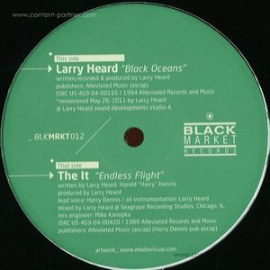 larry heard - black oceans / endless flight