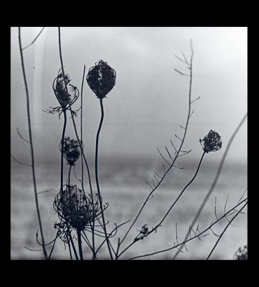 Recondite - Placid (2lp Album + Mp3)